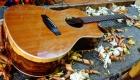Chitarra Acustica Toscano (3)
