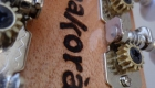 Chitarra Battente Amakora (1)